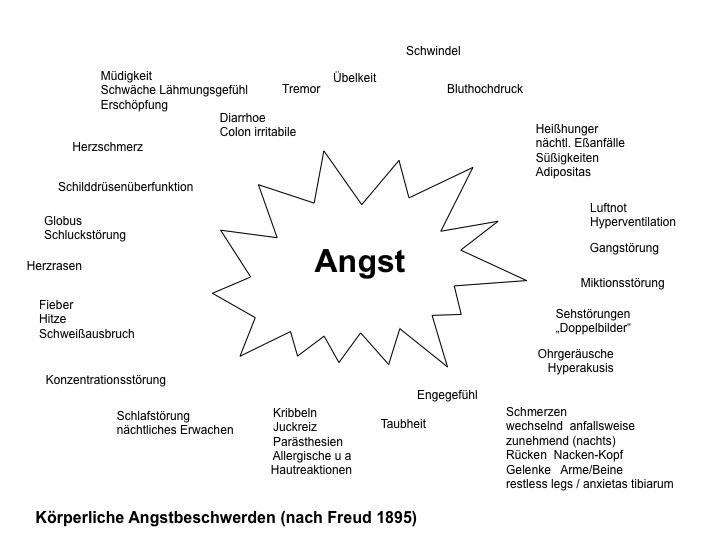 Körperliche Angstbeschwerden (nach Freud 1895)
