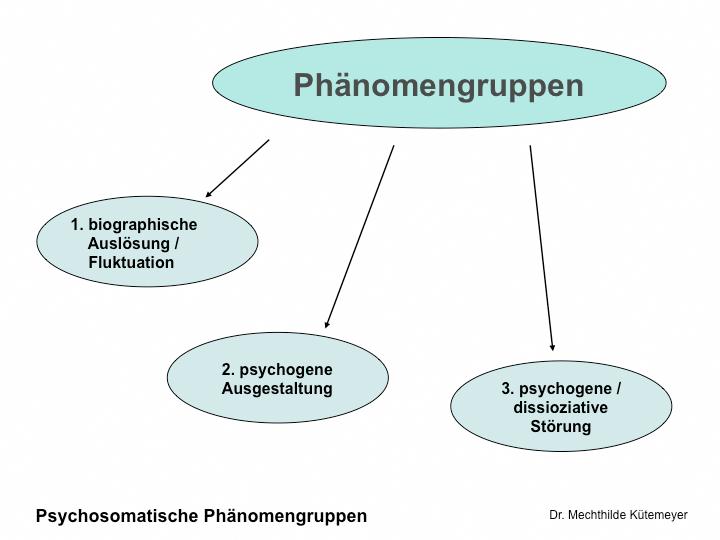 Psychosomatische Phänomengruppen
